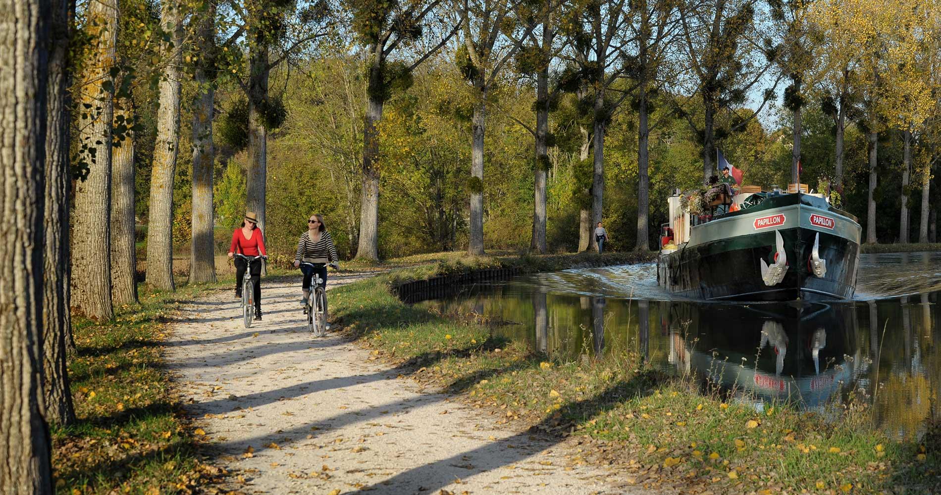 Papillon cruising and cycling